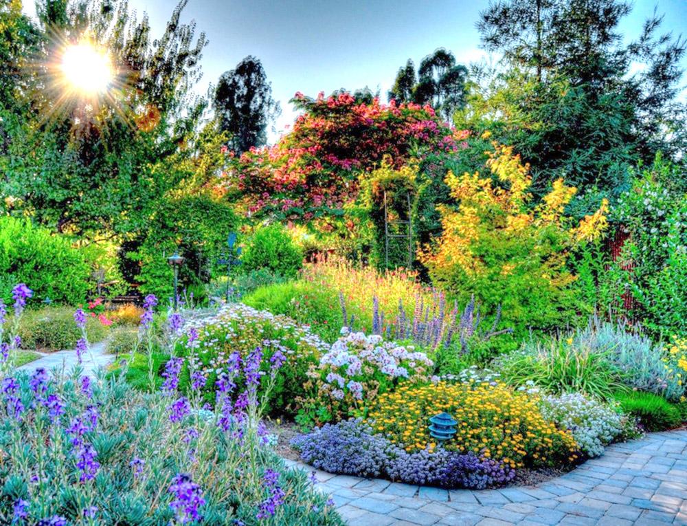 Яркая цветовая композиция — один оптический трюк, который делает ваш сад больше